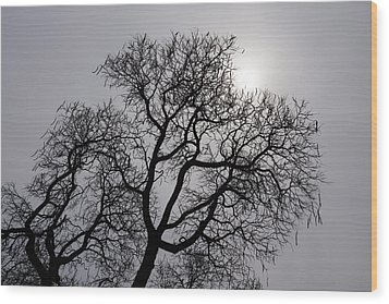 Pearly Silver Filigree On The Sky  Wood Print by Georgia Mizuleva