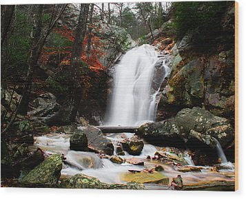 Peavine Falls In Autumn Wood Print by Shelby  Young