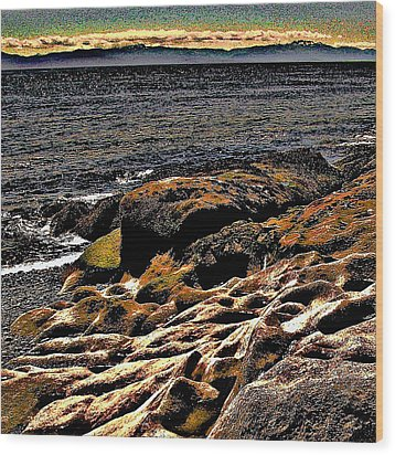 Pebble Worn Rock Wood Print