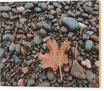 Pebbles Wood Print