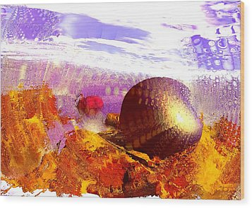 Pebbles On A Beach Wood Print by Anastasiya Malakhova