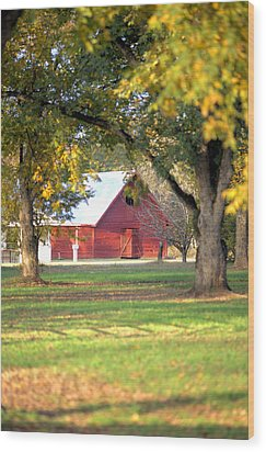 Wood Print featuring the photograph Pecan Orchard Barn by Gordon Elwell