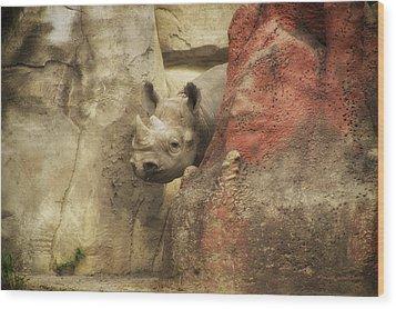 Peek A Boo Rhino Wood Print by Thomas Woolworth
