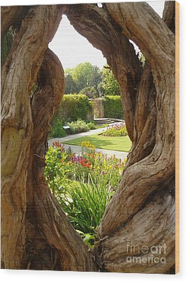 Wood Print featuring the photograph Peek At The Garden by Vicki Spindler