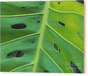Peekaboo Leaf Wood Print by Ann Horn