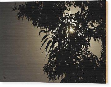 Peeking Sun Wood Print