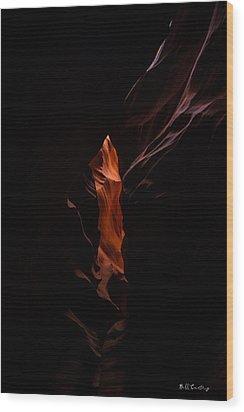 Peeping Through Wood Print by Bill Cantey
