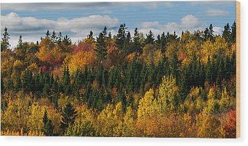 Pei Autumn Trees Wood Print by Matt Dobson