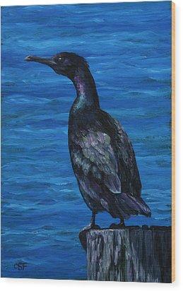 Pelagic Cormorant Wood Print by Crista Forest