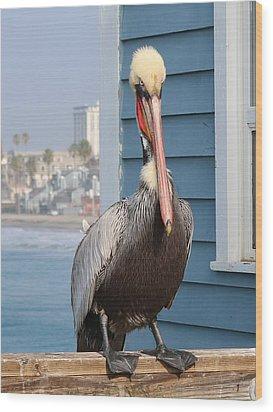 Pelican - 4 Wood Print