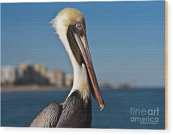 Wood Print featuring the photograph Pelican by Barbara McMahon