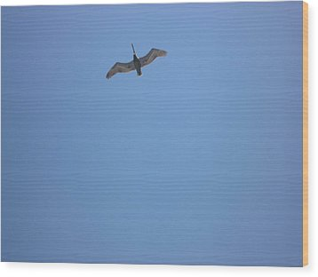 Wood Print featuring the photograph Pelican by Bill Woodstock