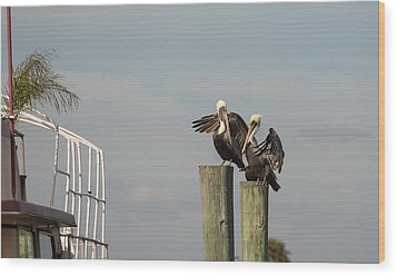 Wood Print featuring the photograph Pelican Buddies by John M Bailey