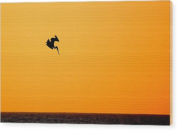 Wood Print featuring the photograph Pelican Diving At Sunset by AJ  Schibig
