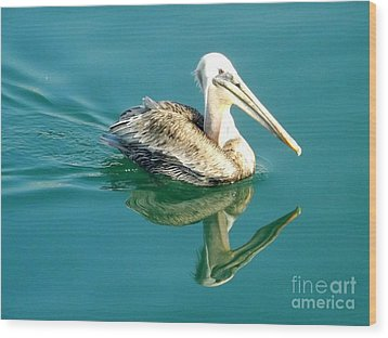 Wood Print featuring the photograph Pelican In San Francisco Bay by Clare Bevan