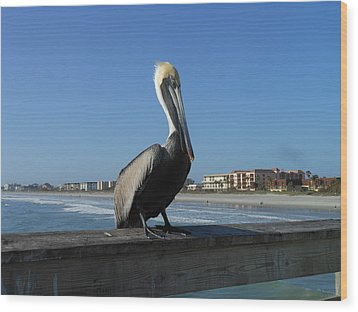 Wood Print featuring the photograph Pelican  by Kay Gilley