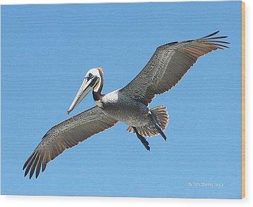 Pelican Landing On  Pier Wood Print by Tom Janca