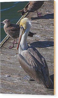 Pelican On Dock Wood Print by Garry Gay