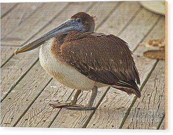 Pelican On The Dock II Wood Print