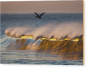 Pelican Over Wave  C6j9351 Wood Print by David Orias