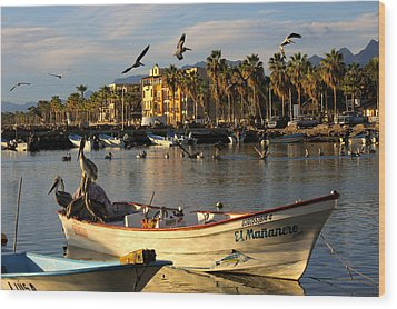 Wood Print featuring the photograph Pelican Panga by Kandy Hurley