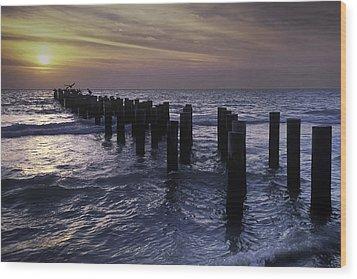 Pelican Pier Wood Print