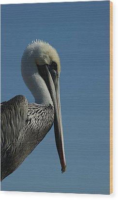 Pelican Profile 2 Wood Print by Ernie Echols
