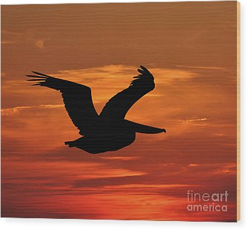 Pelican Profile Wood Print by Al Powell Photography USA