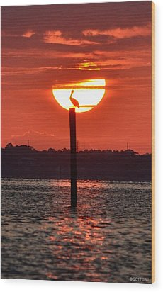 Pelican Silhouette Sunrise On Sound Wood Print by Jeff at JSJ Photography