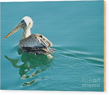 Wood Print featuring the photograph Pelican Swimming by Clare Bevan