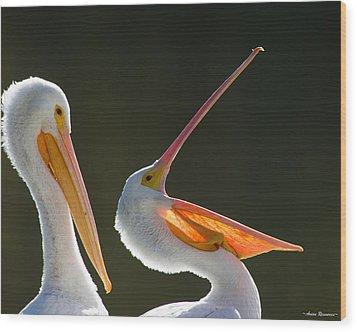 Pelican Yawn Wood Print
