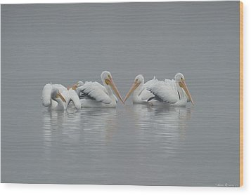 Wood Print featuring the photograph Pelicans In The Mist by Avian Resources