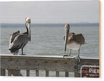 Pelicans On The Pier At Fort Myers Beach In Florida Wood Print