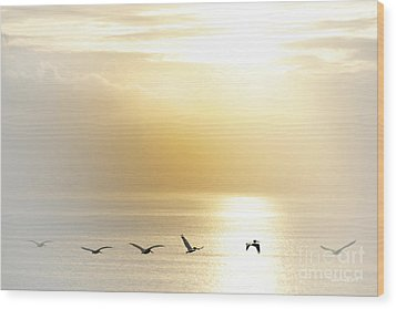 Pelicans Over Malibu Beach California Wood Print by Artist and Photographer Laura Wrede