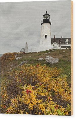Pemaquid Point Lighthouse And Sea Roses Wood Print