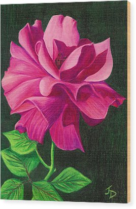 Pencil Rose Wood Print by Janice Dunbar