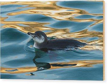 Penguin Watercolor 2 Wood Print