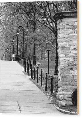 Penn State Campus  Wood Print by Mary Beth Landis