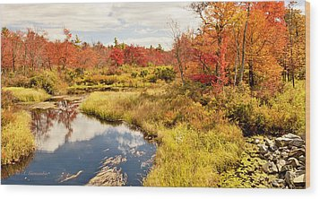 Pennsylvania Autumn Pocono Mountain Stream Wood Print by A Gurmankin