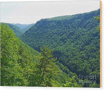 Pennsylvania Grand Canyon 1 Wood Print by Tom Doud