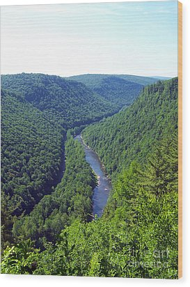Pennsylvania Grand Canyon 3 Wood Print by Tom Doud