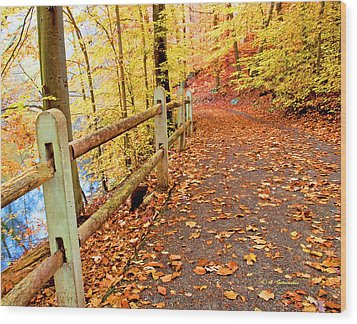 Pennypack Trail Philadelphia Fall Wood Print by A Gurmankin