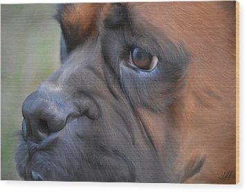 Pensive Boxer Wood Print by Linda Koelbel