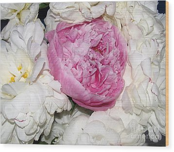 Wood Print featuring the photograph Peony Bouquet 13 by Margaret Newcomb