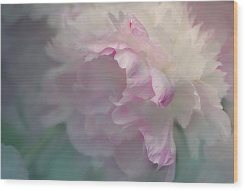 Peony Wood Print by Jeff Burgess