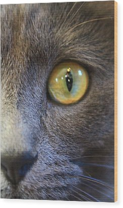 Pepper's Eye Wood Print