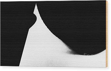 Percentage  Wood Print by Fei Alexander