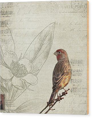 Perched Wood Print