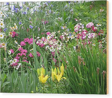 Wood Print featuring the photograph Perennial Garden 2 by Margaret Newcomb