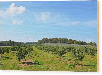 Perfect Fall Day On Alstede Farm Wood Print by Maureen E Ritter